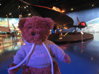 Evabear with the Stealth Bomber