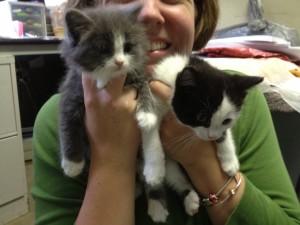 Allison holding Torunn and Kitty America