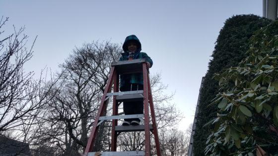 High Climber